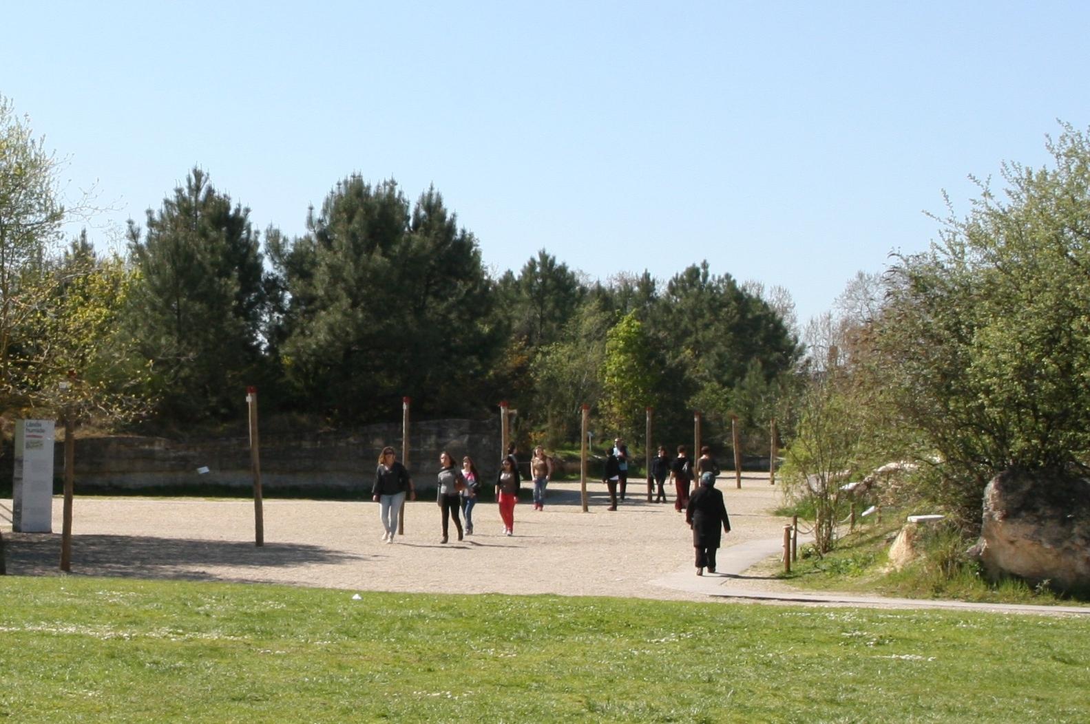 Visites libres jardin botanique de bordeaux for Bastide au jardin secret