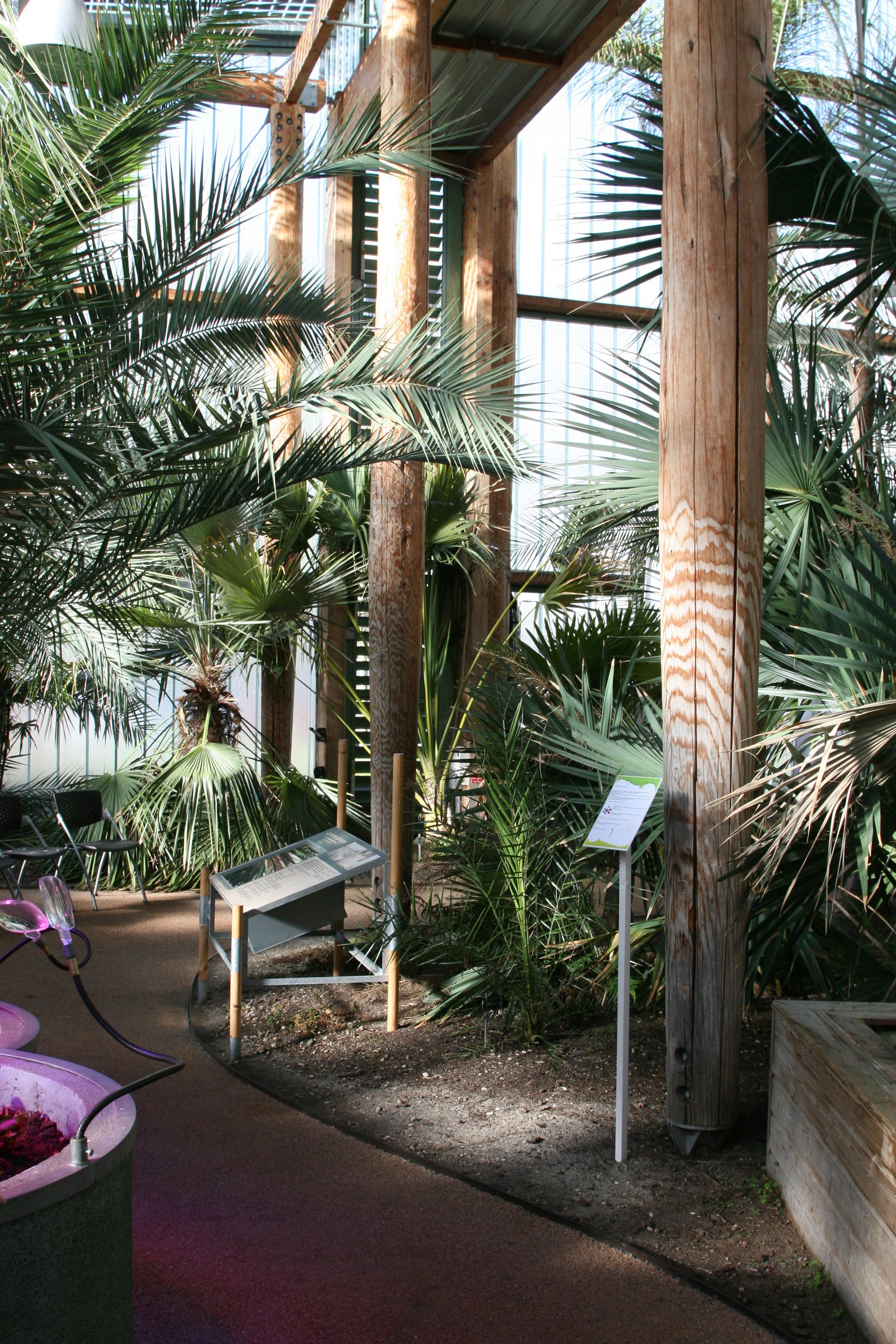 Les serres jardin botanique de bordeaux for Appartement bordeaux jardin botanique