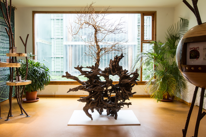Les salles d 39 exposition permanentes jardin botanique de for Jardin botanique bordeaux