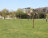 Une grande étendue de pelouse au centre du Jardin Botanique