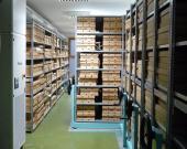 Visite de l'herbarium sur réservation