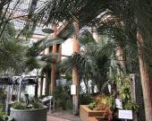 Les serres du Jardin Botanique à la Bastide