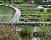 Le jardin aquatique à la Bastide