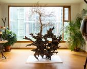 Reynald Giovaninetti donna au Jardin Botanique sa collection de sculptures en bois.