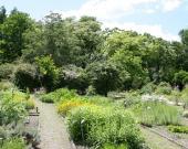 Vue du Jardin Botanique du Jardin Public