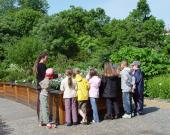 Une visite guidée au Jardin Botanique du Jardin Public