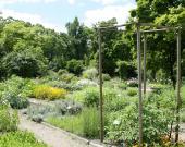 Le Jardin Botanique au Jardin Public