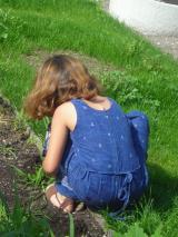 Une petite fille est accroupie dans le jardin, de dos