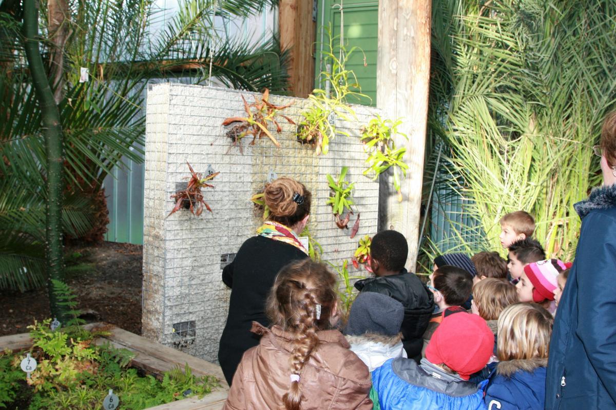 Visites guid es et animations jardin botanique de bordeaux for Jardin botanique bordeaux