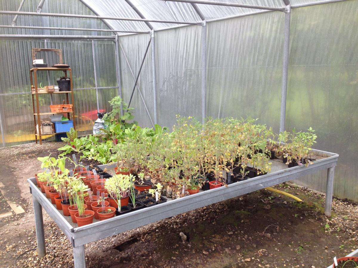 Classes vertes jardin botanique de bordeaux for Jardin botanique bordeaux