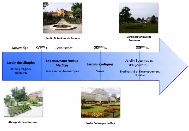 Une petite d finition jardin botanique de bordeaux for Jardin urbain definition