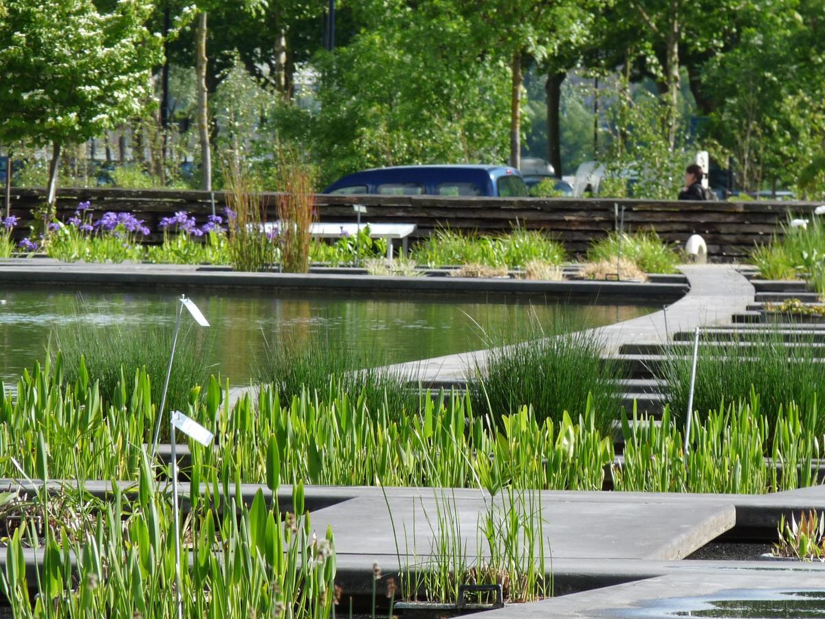 Depuis 2003 le nouvel espace la bastide jardin botanique de bordeaux - Jardin paysager prix bordeaux ...