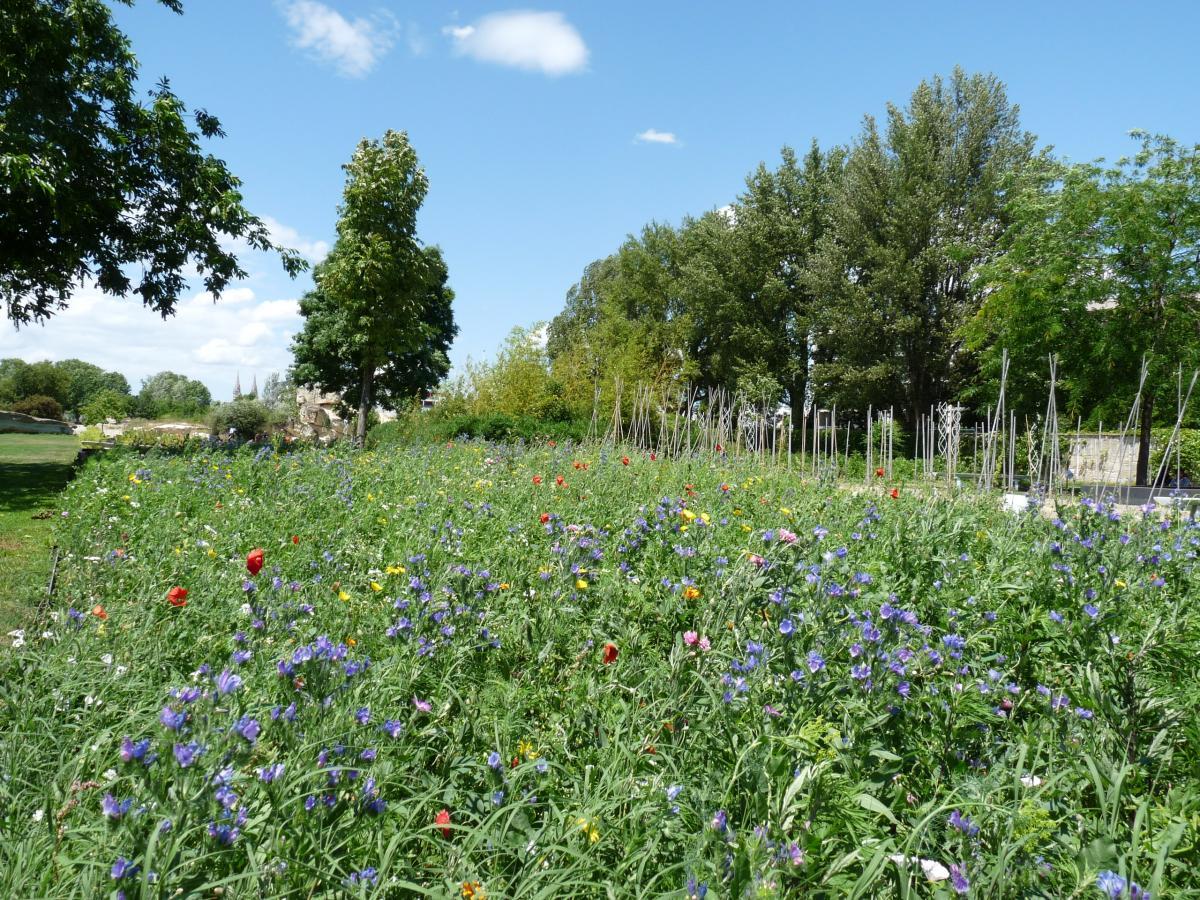Depuis 2003 le nouvel espace la bastide jardin - Residence les jardins de bordeaux bastide ...